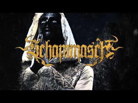 SCHAMMASCH - Consensus (Exclusive track premiere)