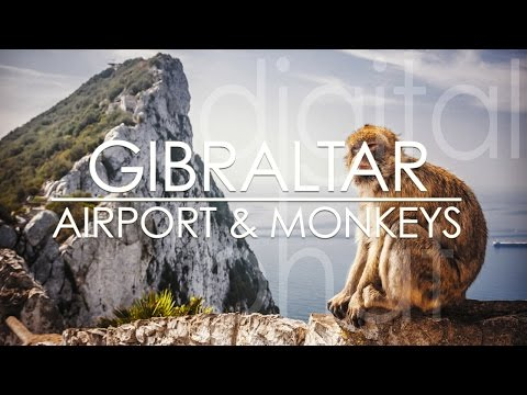 The Rock of Gibraltar and the monkeys