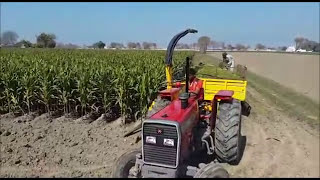 Celikel Maize Chopper making silage: Cattlekit Pakistan http://www.cattlekit.com.pk