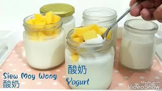 酸奶制作短片 ????Homemade yogurt