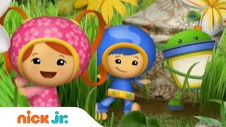 Download Team Umizoomi | Theme Song | Stay Home #WithMe | Nick Jr.