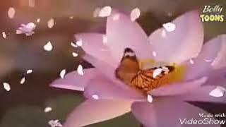 Sad and love theme song.....hamari adhuri kahani...2014