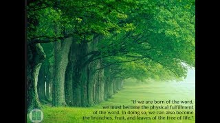 WORLD ENVIRONMENT DAY THEME AND SLOGAN ANDWORLD ENVIRONMENT DAY QUOTES