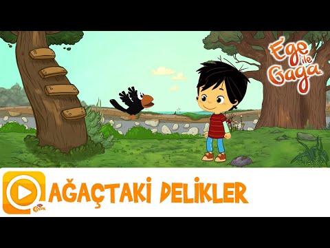 EGE İLE GAGA / AĞAÇTAKİ DELİKLER