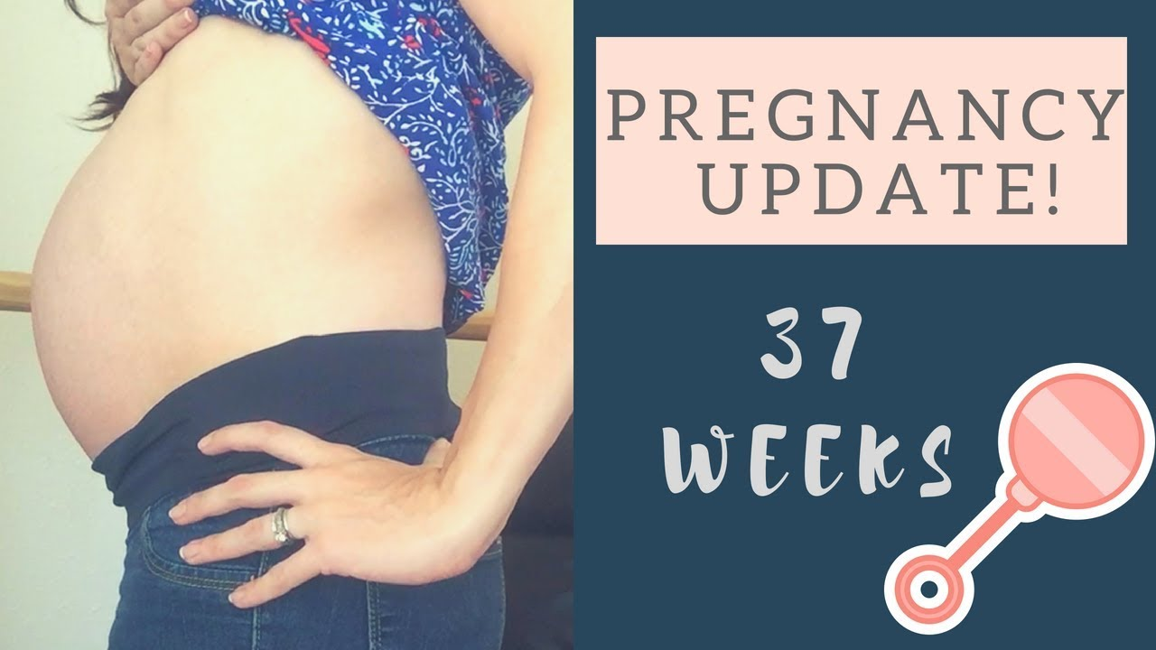 37 Week Pregnancy Update - Sinus Infections, Procrastination and Baby  Movement