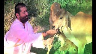 Shri Narayan Sai Suparchar Bhajan | Humko Tumse Pyar Kitna Sai Tum Hi Jante