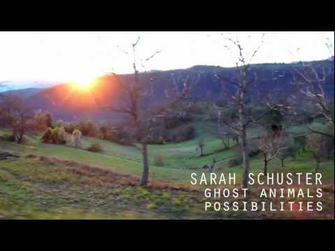 Ghost Animals by Sarah Schuster