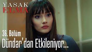 Zeynep, Dündar'ın hakkını verdi - Yasak Elma 36. Bölüm