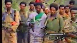 Waraana Adda bilisummaa Oromoo A B O Gaafa duraanii Laali mee