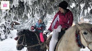 Болгария - Боровец день 2. Звериные шапки, собаки, пони и поросячьи ушки. Следы невиданных зверей.