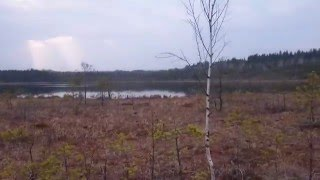 Озеро, видео снято с штатива(Небольшое озеро снятое красиво на телефон сони с штатива., 2016-03-29T12:08:24.000Z)