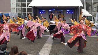 四季舞 『桜彩』4K動画 2017.5.13三重県立看護大学 夢緑祭 2015年度過去...