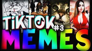 😎 TIKTOK MEMES #3 | The best tiktok memes 😜 | LO MEJOR DE TikTok | Aguacates Alv 🥑