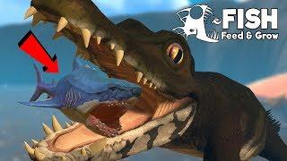 โคตรจระเข้ยักษ์!...โดดขย้ำอาละวาดเดือด? | Fish Feed and Grow #86