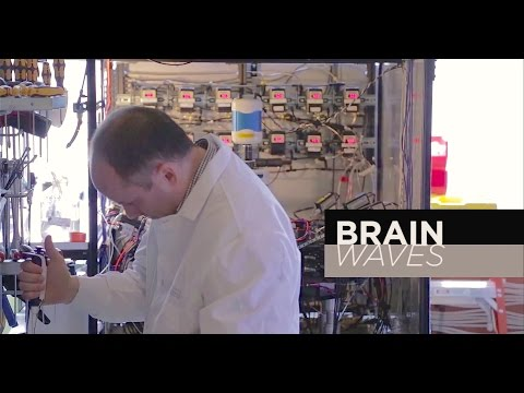 Brain Waves: Recording from 12 neurons at once