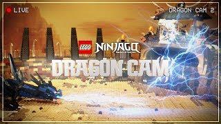 The LEGO NINJAGO LIVE Dragon Cam 🔴