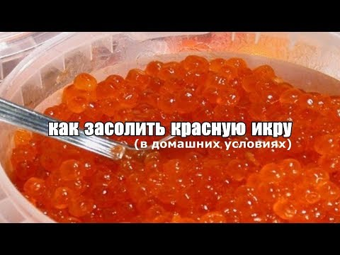 Как засолить красную икру?