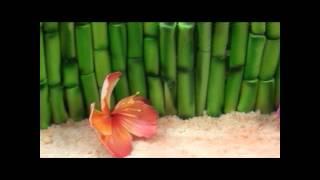 Hawaiian Cake - Complete Deelite
