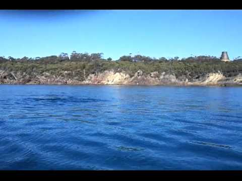 Close encounter with a whale in Eden NSW