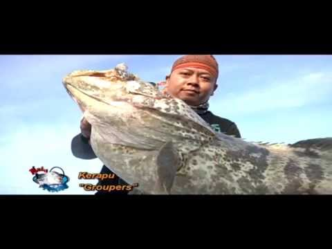 Ekspedisi Berdikari Monster Laut Dalam - Mata Pancing (12/9)