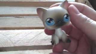 Кошка сиамская стоячая #5 с голубыми глазами и розовым магнитом