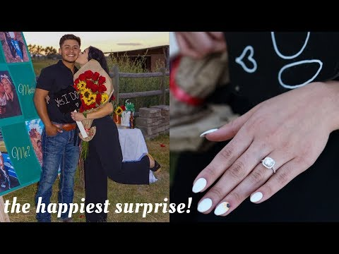 SURPRISE PROPOSAL   WE ARE ENGAGED