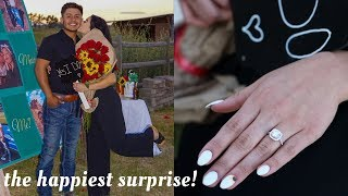 WE ARE ENGAGED | THE PROPOSAL ... 💍