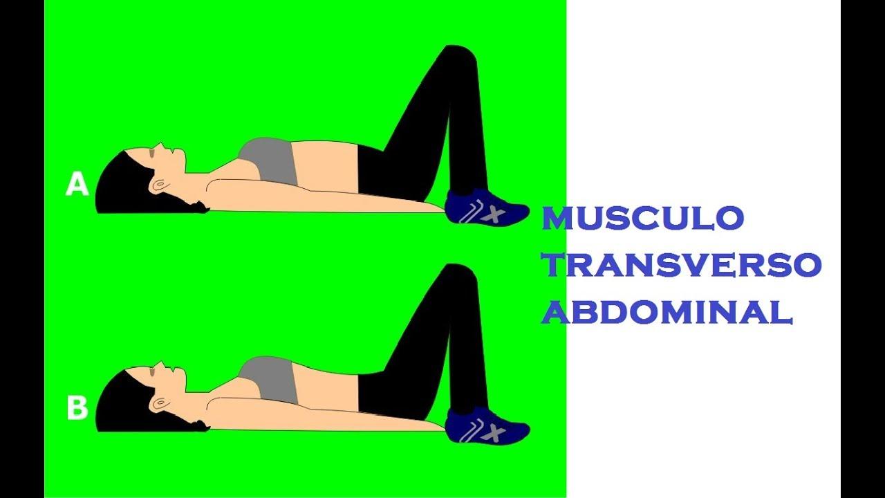 ejercicios para el recto mayor del abdomen
