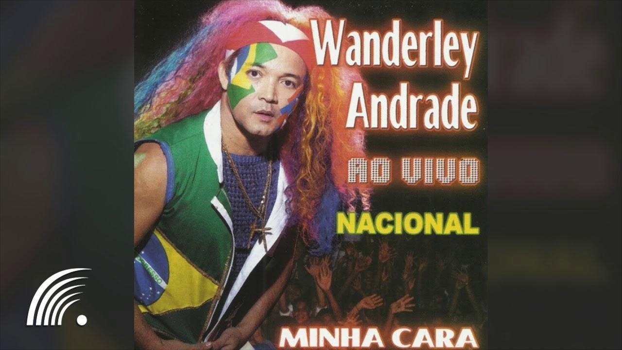 cd de wanderley andrade grandes sucessos