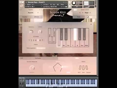 e-instruments Session Keys Grand S&Y - Review