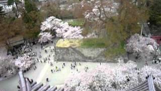 SHONAN-HIBEES 10th Ani AIDU FUKUSHIMA 04