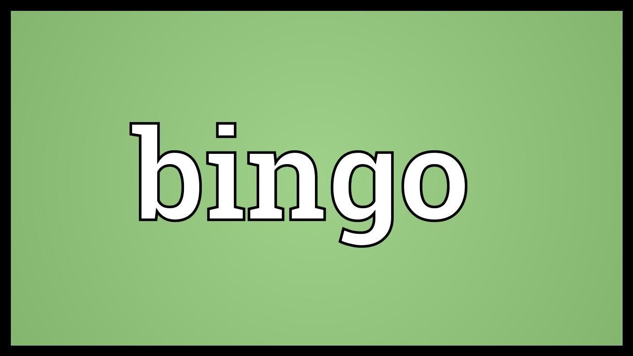 Bingo Meaning