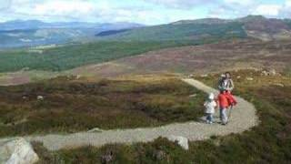Tay Forest Park Scotland (Mima...)