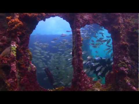 Visit Aruba
