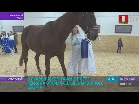 В Пуховичском районе после ремонта открылась школа конного спорта.Панорама