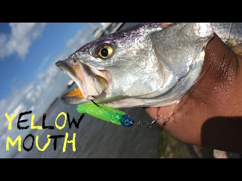 Galveston Tx Fishing 2020 (Unexpected Catches On A Quick Trip