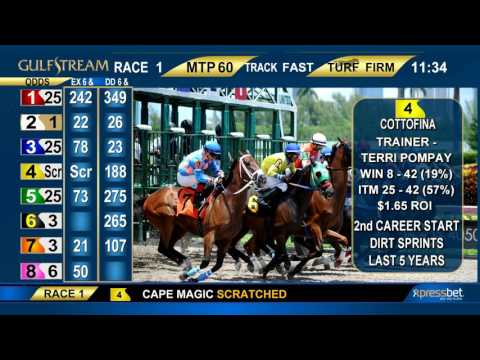 Gulfstream Park Handicapping Show   March 19, 2017