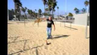 Austin - The Flyin Lion , Circle Work - Venice Beach