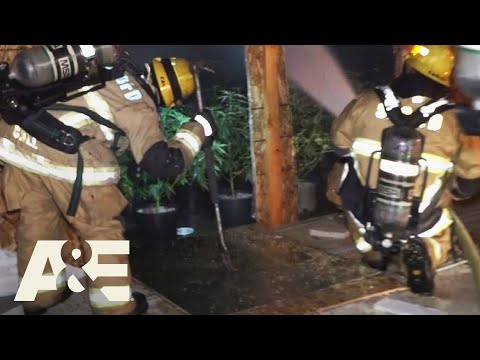 Live Rescue: Grow House Fire (Season 2) | A&E from YouTube · Duration:  3 minutes 29 seconds