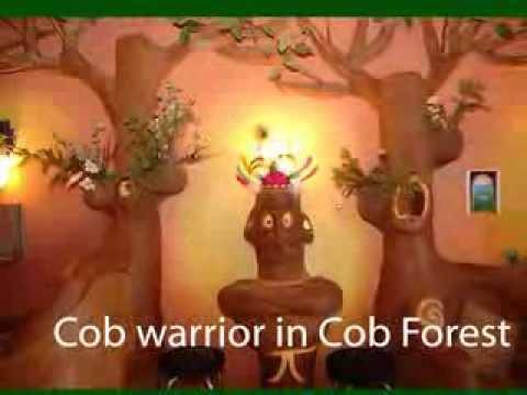 Cob Pictures