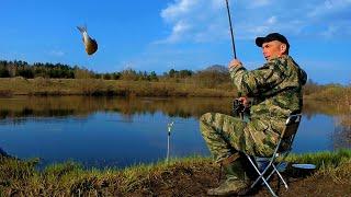Рыбалка на фидер Такого клёва в мае я не ожидал