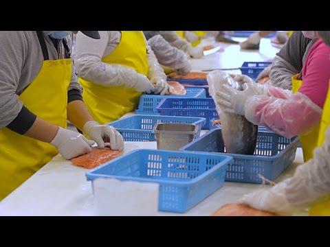 Inside an Alaskan Seafood Plant