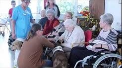 Hundetherapie im Caritas Seniorenheim Amberg