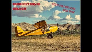 Bush flying in Draco with the Flying Cowboys,  Sandbar hunting in Idaho