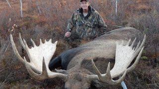 Self Guided Alaskan Giant Moose Hunt  2014 /  Kent Kaiser Alaska