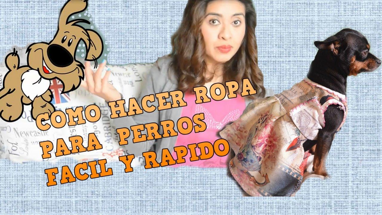 3f48f9db0 COMO HACER ROPA PARA PERROS CHIHUAHUA (HEMBRA) - YouTube