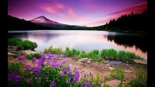 Медитация, звуки природы, шум дождя, пение птиц, релакс успокоение, сон, сила энергии
