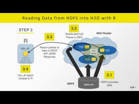 Natural Language Processing with H2O