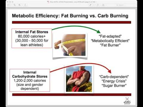 Metabolic Efficiency 101 with Sports Dietitian Dina Griffin