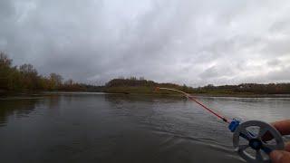ДАВНЕНЬКО Я ИХ НЕ ЛОВИЛ рыбалка на зимнюю удочку река Чулым